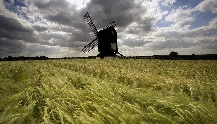 Возможно за окном осень, но в «Слове жизни» дует весенний ветер!