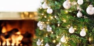 США: работница госсовета покинула свой постне захотевназвать елку рождественской