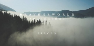 Brave New World /Amanda Cook – Pieces