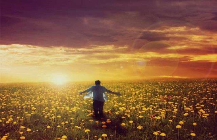 Рик Уоррен: Почему Бог создал сначала Адама, потом Еву?