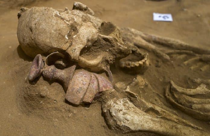 Археологическое открытие: нашли кладбище филистимлян на юге Израиля