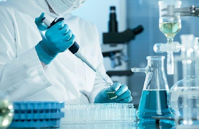 Израильские ученые приблизились к созданию лекарства от меланомы
