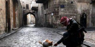 Алеппо: война продолжается, несмотря на временное перемирие
