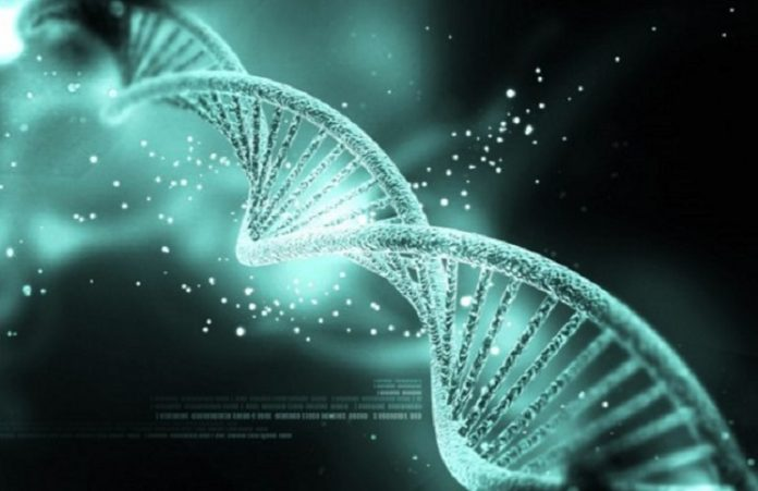 Лауреат Нобелевской премии: вера в Бога заложена у нас в генах