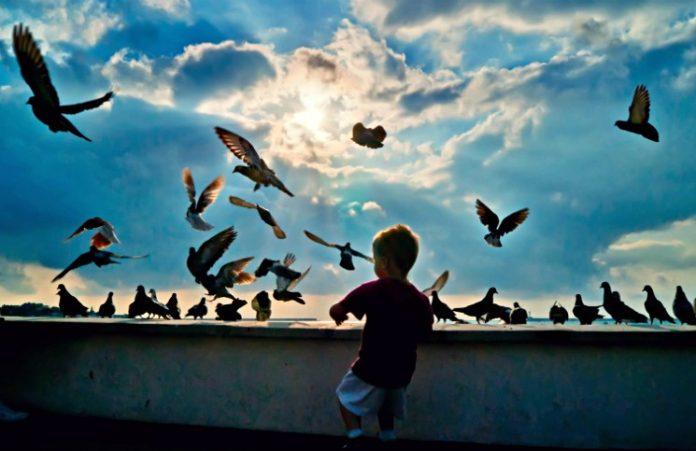 Научите этому детей, пока они еще «в гнезде»