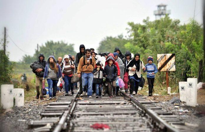 Христианство в Европе возрождается благодаря мусульманским беженцам