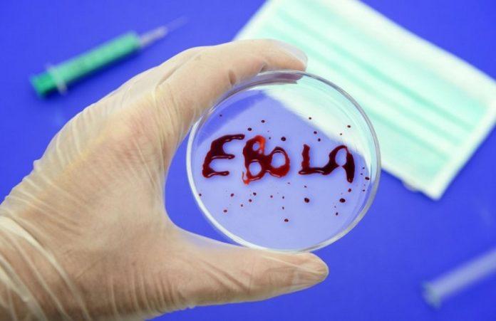 В кинотеатрах США идет фильм о врачах-миссионерах, боровшихся с Эбола
