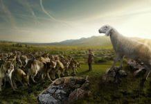 Волки в овечьей шкуре: есть и такие христиане...