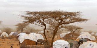 340 тысяч беженцев уже больше 25 лет живут на границе Кении и Сомали
