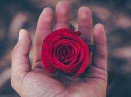 Первая любовь… Правильно ли мы понимаем?